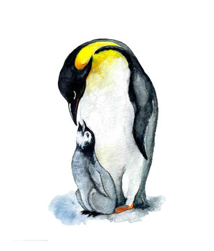 Cute watercolor penguin with baby