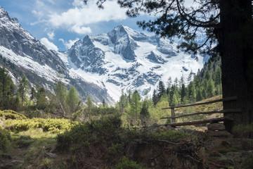 Fototapete - Blick zu einem Gletscher im Zillertal in Tirol