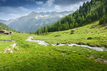 Fototapete - Almlandschaft mit Wildbach im Zillertal