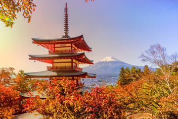 Poster Bedehuis Fuji mountain and traditional Chureito Pagoda Shrine from the hilltop in autumn, Japan