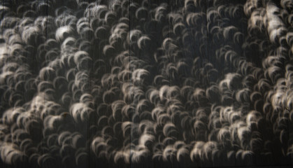 Crescent shaped shadows during solar eclipse