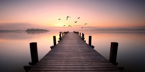 Fotorollo Lavendel romantischer Steg mit Vögeln