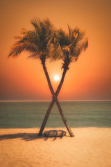 Wall Mural - Two coconut palm tree cross on the tropical beach at sunset. Vintage tone.