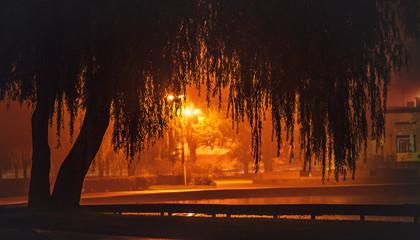 Foto auf AluDibond Braun Miasto nocą