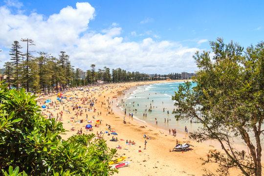 People sunbathing and enjoying Manly beach