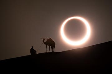 Photo sur Aluminium Abou Dabi Annular solar eclipse in desert with a silhouette of a dromedary camel. Liwa desert, Abu Dhabi, United Arab Emirates.