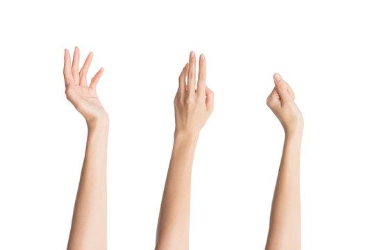 手入れされた3つの指先