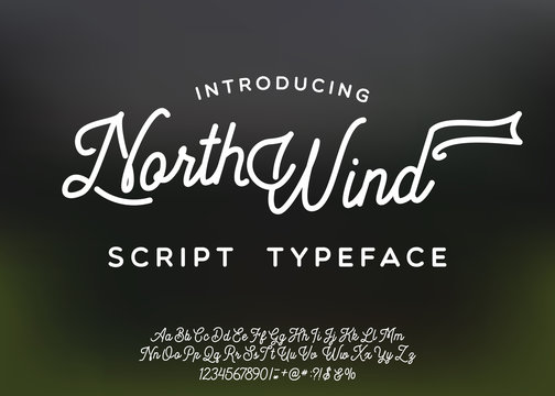 North Wind logo and script font. Original handmade typeface. Stylish font and logo to create prints and posters.