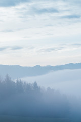 Aluminium Prints Blue sky Misty blue and green landscape with forest and clouds in retro style