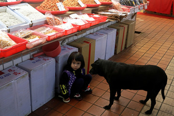 A dog looks at a little girl in a fish market in Taoyuan