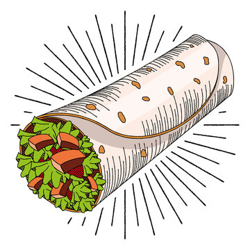 Tortilla wrap - illustration/ clipart
