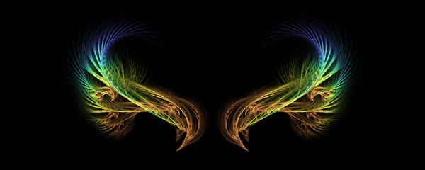 gradient abstract fractal wings with black background