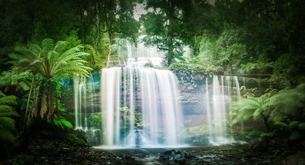Poster de jardin Cascades Waterfall in dense rainforest