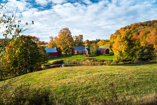 Farm in rural landscape on an autumn morning. Beautiful fall foliage.