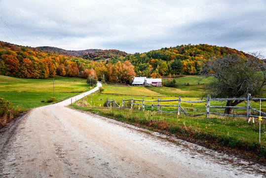 Unpaved road to a farm in a rolling rural landscape on a cloudy autumn morning. Beautiful autumn colours.