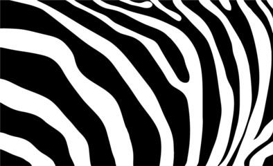 Wall Murals zebra stripes background