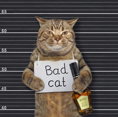The beige cat with a sign on his neck that says Bad Cat is holding a bottle of rum in the prison. Black lineup background.