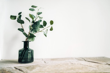 Green tree Branch putted into black glass vase on the natural stone mantel shelf on the white color wall background lit with side window light. Cozy home decor elements concept image. Wall mural