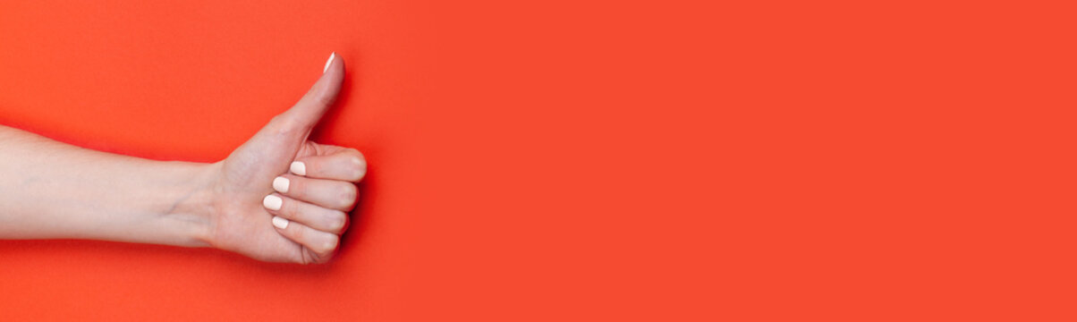 Female hand shows thumb up on red background, banner format, place for text