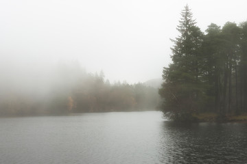 Foto op Aluminium Grijs Beautiful mody Autumn Fall landscape of woodland and lake with mist fog during early morning