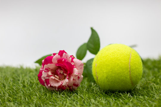 Tennis Valentine's Day with rose are on green grass