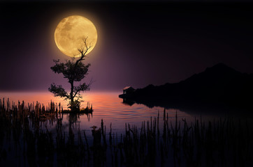 Beautiful moonlight in dark night