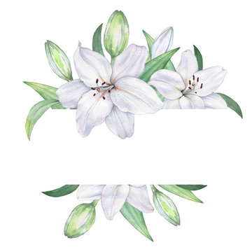 Frame of white lilies. Watercolor illustration. Hand drawing. Decorative item suitable for Wallpaper, wrapping paper and backgrounds, postcards and wedding invitations