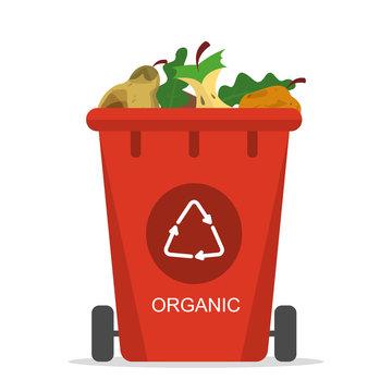 Organic waste in the trash bin vector isolated