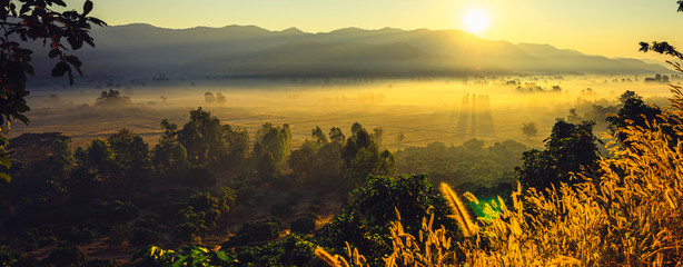 Foto auf AluDibond Grau Verkehrs The beautiful panorama landscape of the sunrise, The sun's rays through at the top of the hill and the moving fog over the tree in the rice fields, Chiang Rai Northern Thailand.