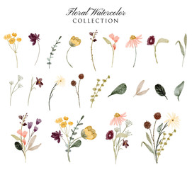 Fototapeta floral garden watercolor collection obraz