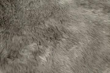 ファー 毛皮 背景 テクスチャ 灰色 素材