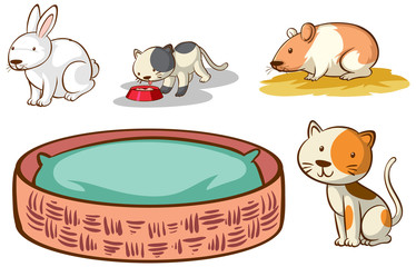 In de dag Kids Isolated picture of different pet
