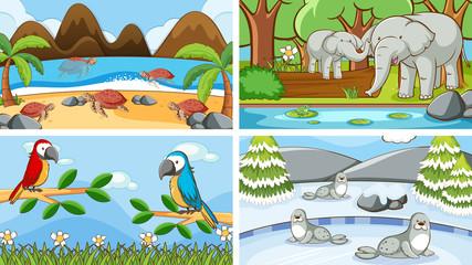 In de dag Kids Background scenes of animals in the wild