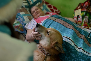 A resident of a nursing home strokes a dog during a visit of volunteers on the occasion of the Christmas and New Year holidays, in Omsk region