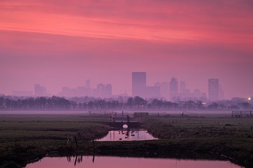 Photo sur Aluminium Rotterdam Morning mist at the skyline of Rotterdam, just before sunrise, purple pink colored sky.