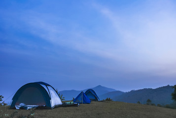 Foto auf Leinwand Katze In the early morning, the Doi Kat camping area, Nanthaburi National Park. Nan Thailand