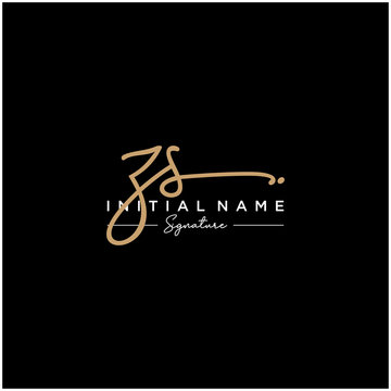 Letter ZS Signature Logo Template Vector