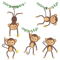Monkey watercolor set of animals tropics illustrations