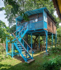 Large Treehouse built in Goa India
