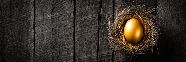 Fototapeta Banner Of Golden Nest Egg On Rustic Wooden Table Background - Investment Concept obraz