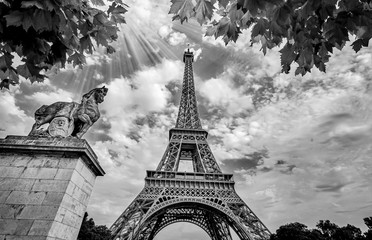 Photo sur Aluminium Tour Eiffel Eiffel Tower in Paris France with Golden Light Rays. Black and White Photography