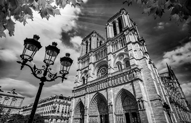 Notre-Dame Cathedral in Paris France Black and White Photography