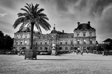 Jardin Du Luxembourg and Palace in Paris France. Black and White Photography