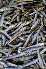 anchovies - dried small fish