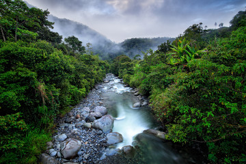 River with big stones and trees, tropic mountain forest during rain, Colombia landscape. Tropic forest in South America.