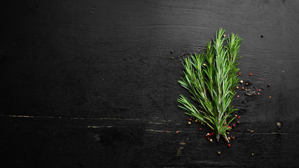 Wall Mural - Spices and herbs. Fresh rosemary on black wooden background. Top view. Free space for your text.