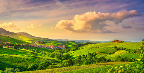 Photo sur Toile Vignoble Langhe vineyards view, Barolo and La Morra, Piedmont, Italy Europe.