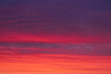 Türaufkleber Koralle Winter Sunrise