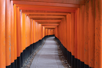 Foto auf Leinwand Rot Empty space in Fushimi Inari Taisha temple in travel holidays vacation trip concept in outdoor in Kyoto, Japan. Red poles in the temple. Walkway tunnel of shrine. Structure architecture background.