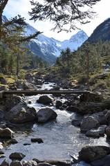 Vallée du Lutour, Cauterets, Pyrénées, France